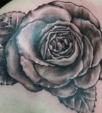 Exotic Black Rose Tattoo Designs for Women