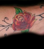 Rose Vines Tattoos For Your Inspirational Designs