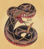 Sailor Jerry Snake Tattoo Design