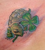 Turtle And Shamrock Tattoo PIctures