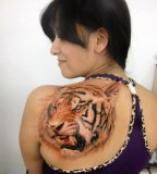 Tiger Shoulder Tattoo Designs for Woman