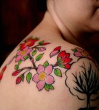 Cherry Blossom Upper Shoulder Tattoo
