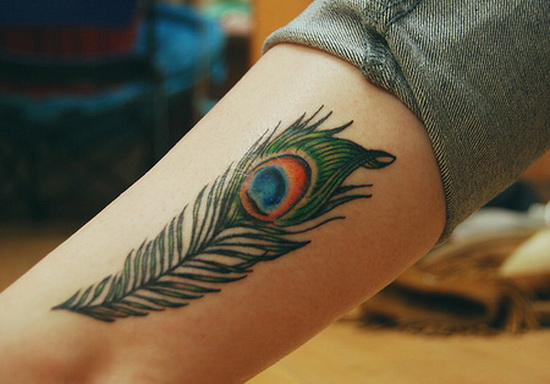 Amazing Feather Peacock Tattoo On Leg