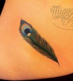 Awesome Feather Peacock Tattoo On Hip