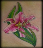 Small Green Pink Stargazer Lily Tattoo