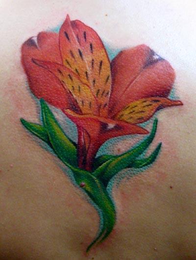 Stargazer Lily Tattoo On Back Tattoos And Tattoo Design