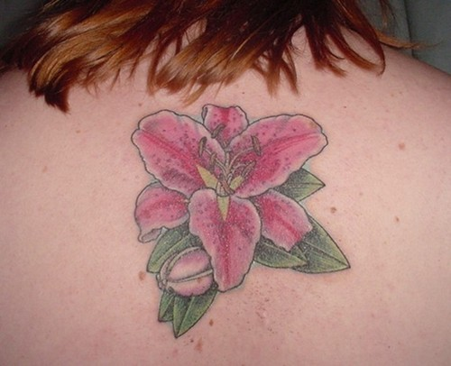 Stargazer Lily  Tattoo Picture For Girl