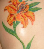 Lily Flower Tattoo On Back Shoulder for Girls