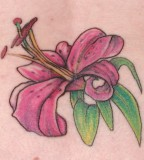 Stargazer Lily Tattoo Design on Back For Women