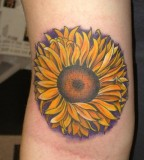 Sunflower Tattoo Design on Arm