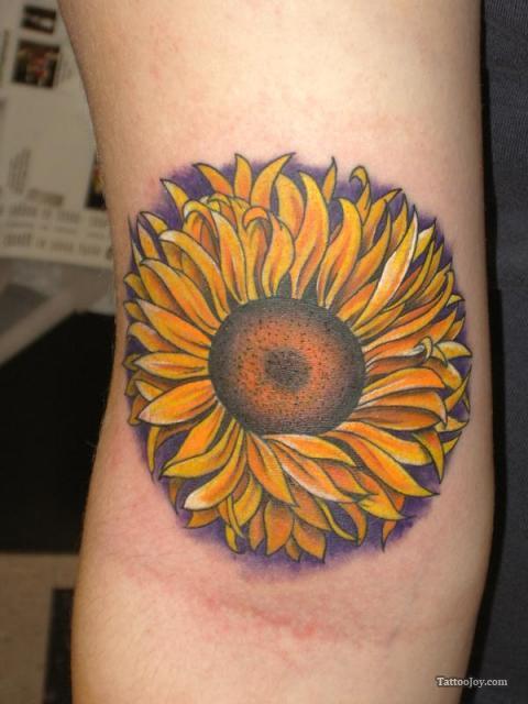 Sunflower Tattoo Design on Arm