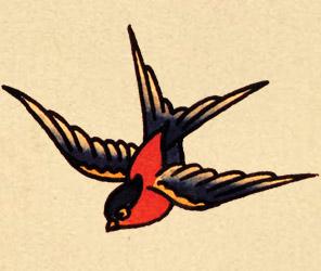 Imaginative Swallow Bird Tattoo Picture