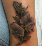 Beautiful Sweet Pea Flowers Tattoo in Dark Shades