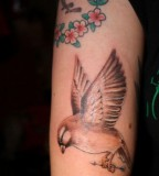 Unique Sparrow Shaped Tattoo Design for Girls