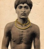 History Of Traditional Hawaii Tattoos Pictures