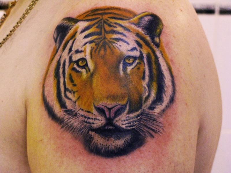 Tiger Tattoos Designs Ideas Men Arms