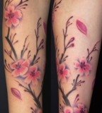 Cherry Blossom Tattoo Design on Arm for Women