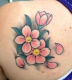 Body Part Back Cherry Blossoms Tattoo Design