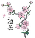 Traditional Chinese Drawing Cherry Blossom Tattoo Design