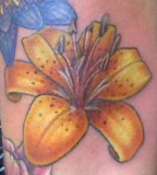 Tattoos Color Tiger Lily