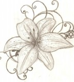 Tattoo Design Tiger Lily Sample