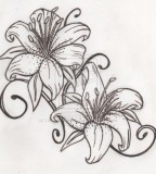 Black and White Tiger Lily Sketch Tattoo