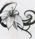 Tiger Lily Tattoo By Shadahazen On Deviantart Free Download