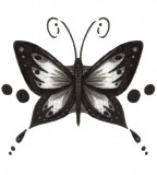 Black Grey Tribal Butterfly Tattoo Design Sample