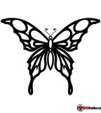 Black Tribal Butterfly Tattoo Sketch