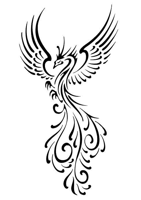 5bef833f9 Flying Tribal Phoenix Tattoo Ideas - | TattooMagz › Tattoo Designs ...