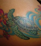 Colorful Turtle Tattoo Designs For Women