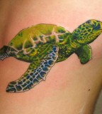 Surreal Tattoo Of Turtle