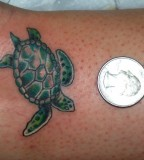 Little Turtle Tattoo Ideas - Animal Tattoo