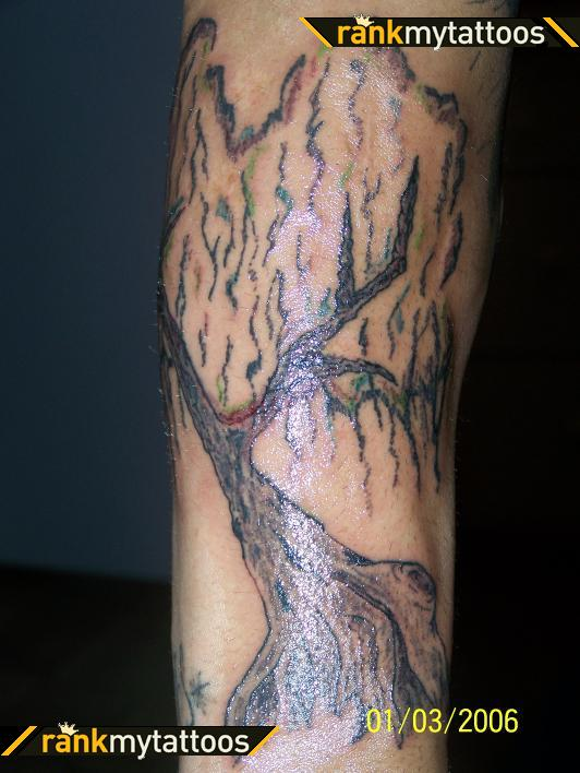 Gorgeous Weeping Willow Tree Tattoo On Half Sleeve Tattoomagz
