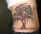 Dashing Weeping Willow Tattoo on Woman's Rib