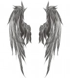 Coolest Sketch of Angel's Wings for Back Tattoo Designs