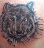 Wolf's Head Body Art Tattoo For Men