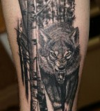 Wild Wolf Tattoo Image For Men