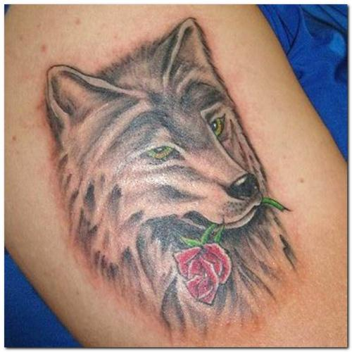 Wolf Biting Rose Tattoo Design For Men